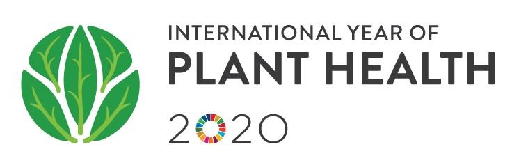 plantes any internacional