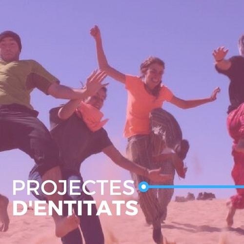 Projectes d'entitats