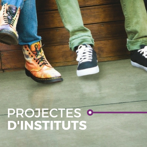 Projectes d'instituts