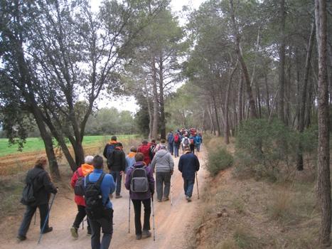 Passejada Rodal 16 web municipal 350x467