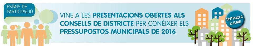 Consells de districte